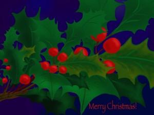 christmas-1497889_960_720